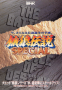 marzo11:fatal_fury_special_-_flyer.png