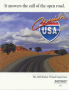 marzo10:cruis_n_usa_flyer.png