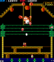 archivio_dvg_01:donkey_kong_3_-_06.png