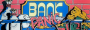 nuove:bankp1.png
