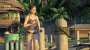 nuove:uncharted_drake_s_fortunen.png