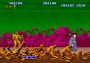 archivio_dvg_03:altered_beast_-_finale_-_01.png