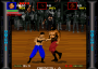 dicembre09:pit_fighter_0000_hitf12.png