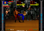 dicembre09:pit_fighter_0000_psc.png