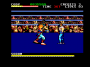 maggio11:final-fight-amstrad-cpc-screenshot-in-the-rings.png