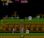 archivio_dvg_02:ghosts_n_goblins_stage1_partea.png