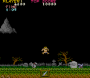 archivio_dvg_02:ghosts_n_goblins_stage1_secret1.png