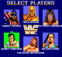 dicembre09:wwf_superstars_select.png