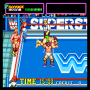 dicembre09:wwf_superstars_0000.png