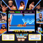 dicembre09:wwf_superstars_artwork.png